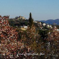 Cosa fare in provincia di Gorizia con i bambini
