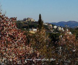 giardino viatori vista castello gorizia