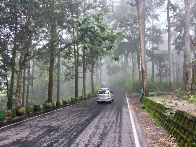A Monsoon Drive in Northeast India - The Dialogues Diaries™