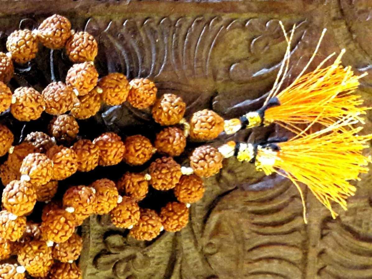 Why do Sadhus of India wear rudhraksh beads?