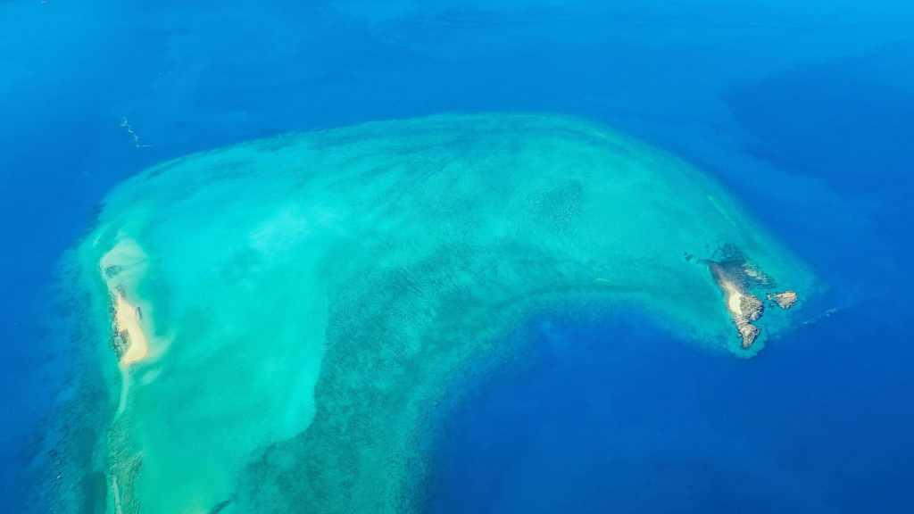 Survol des premiers récifs