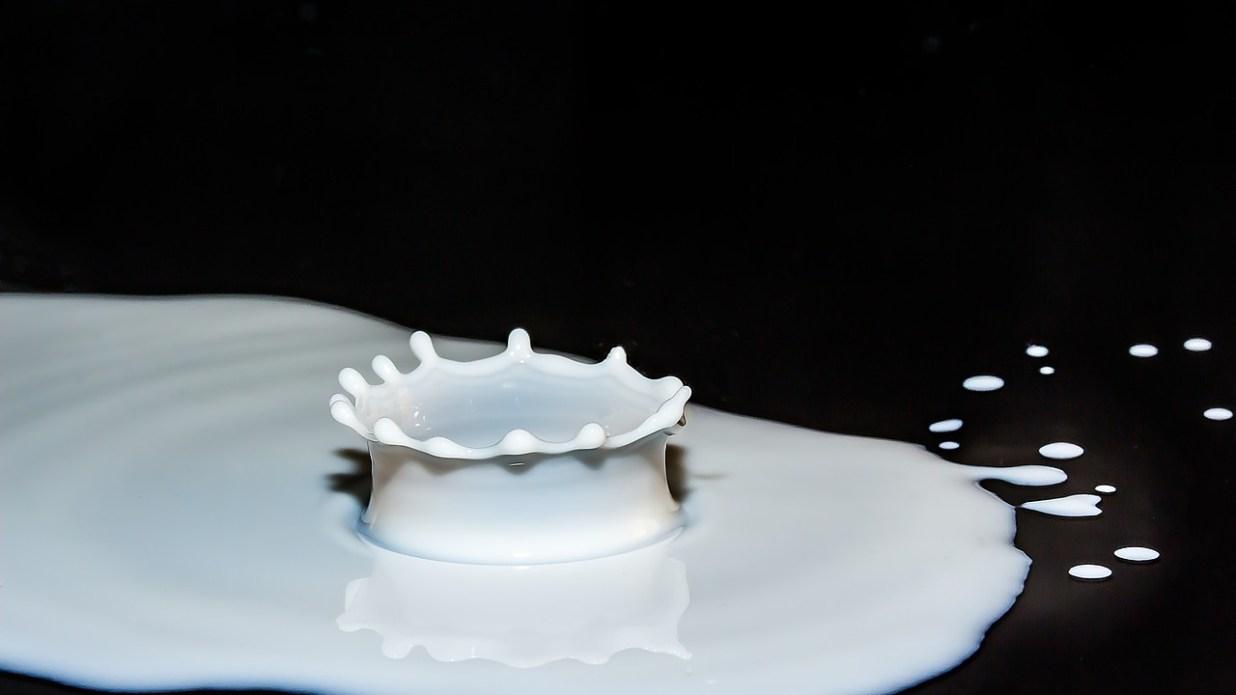 Intolleranza al lattosio, un problema sempre più diffuso.