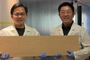 liangbing-hu-left-holds-a-block-of-wood-transform-and-teng-li-right-holds-an-untreated-block-of-the-same-wood
