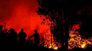 Continúan-labores-disipar-incendio-UNAMGlobal