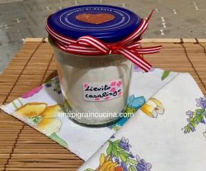LIEVITO ISTANTANEO FATTO IN CASA (per dolci e torte salate)