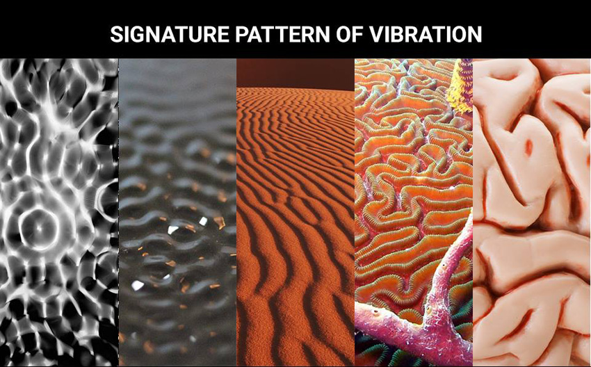 signature pattern of vibration