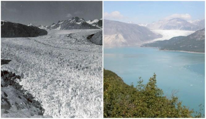 Muir Glacier, Alaska.