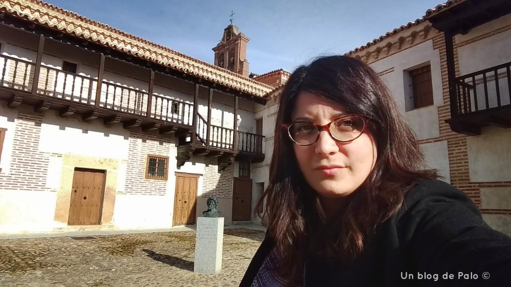 Madrigal de las Altas Torres (6)