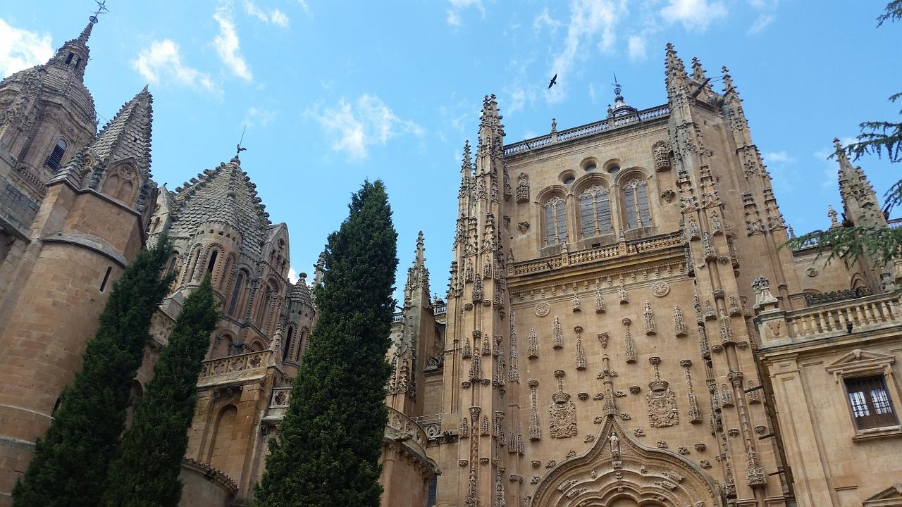 Restaurantes en Salamanca donde comer bien