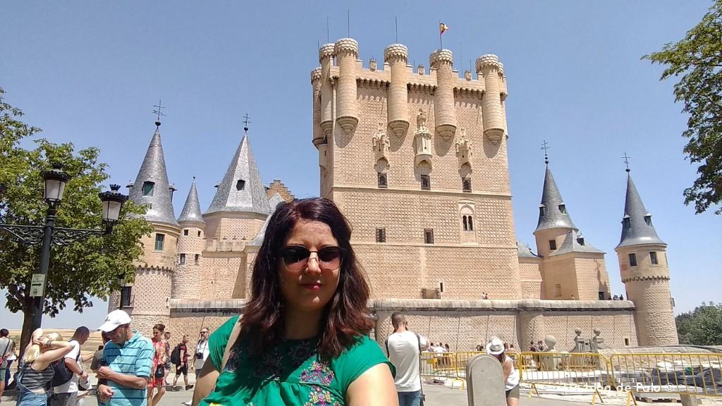 Paloma en Segovia
