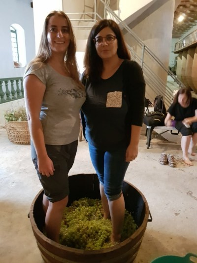 Con Cristina pisando uva