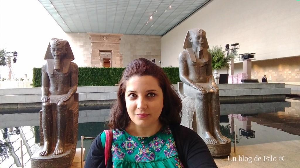 Palo en el Museo Metropolitan de NY