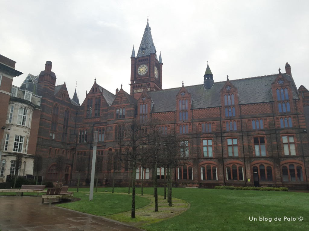 Red brick University
