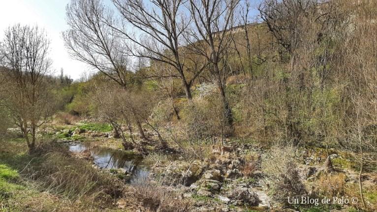 Ruta del Río Alagón
