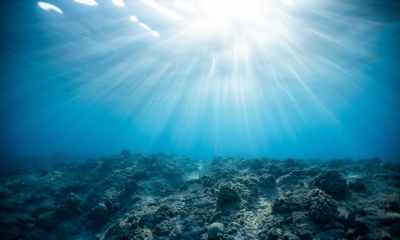 Top 24 Deep Truths Every Spiritual Seeker Must Know