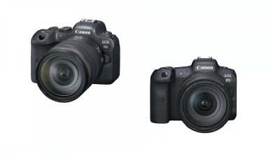 Photo of Canon Expands EOS R Line with EOS R5 and R6