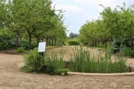 potager chateau de la Roche-Guyon