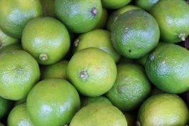 Citrons verts du marché