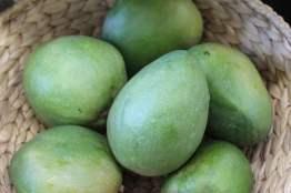 vrac mangues