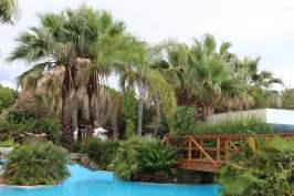 piscine de l'oleandri