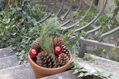 pommes de pin dans pot de fleur