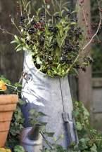 seau à charbon avec bouquet de sureau