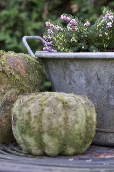 Les bassines en zinc installées au jardin