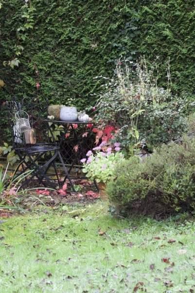 La partie ombragée de mon jardin