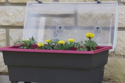 Plantations de printemps, jardinière Calipso