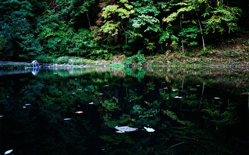 Mystic_Forest_by_Sunira