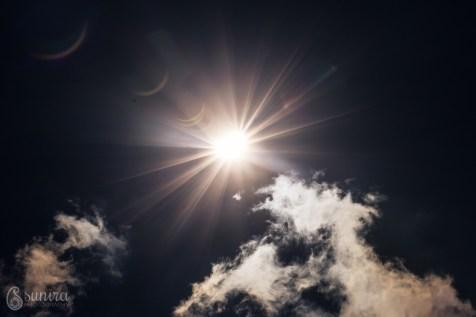 SuniraPhotography.com-IMG_3483