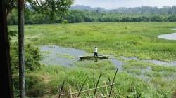 crocodile lake cattien