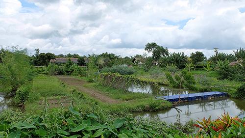 Mekong riverside cai be
