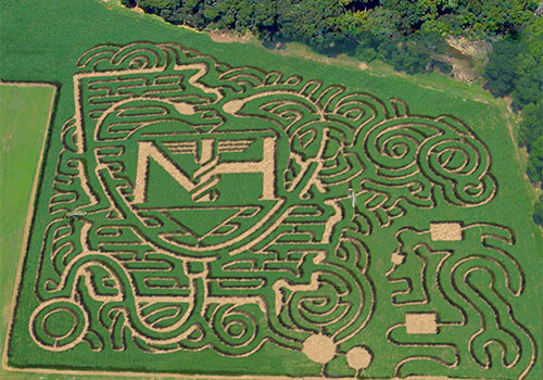 Image result for corn maze