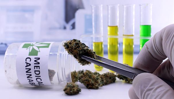 Cannabis Vodka - A Product New Vodka With A Cannabis Kick