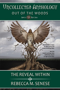 Book Cover: The Reveal Within