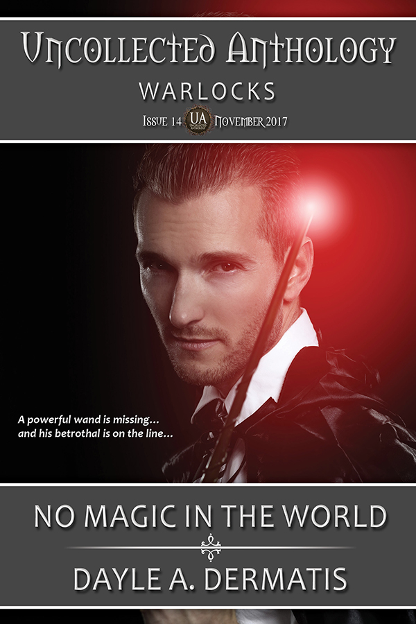 Book Cover: No Magic in the World