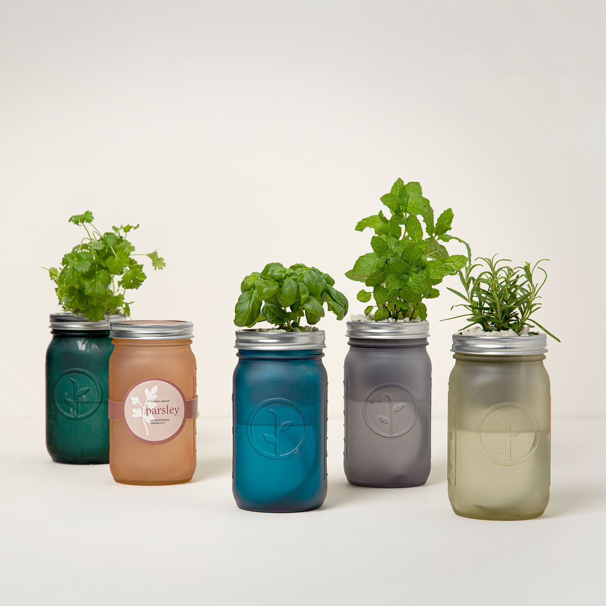 Unique Gardening Gifts & Accessories UncommonGoods