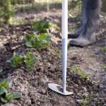 Weeding the Spiritual Garden