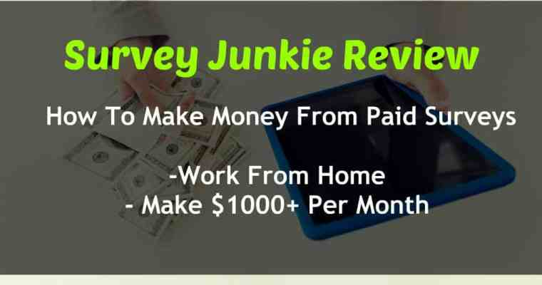 Survey Junkie Review – Get Paid Daily With Online Surveys