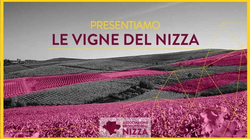 """NIZZA DOCG: da sottozona a """"zonazione"""""""