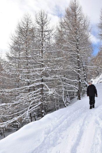Hautes_Alpes_Orcieres_un_couple_en_vadrouille