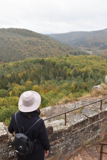 Vue sur la foret d'automne depuis le haut du Château fort de Fleckenstein en Alsace