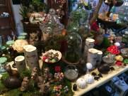 2014-11-01 The Garden Gnome Bonsai-01