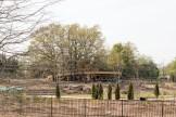 2016-04-08 Tulsa Botanic Garden - Preview Children Garden-03