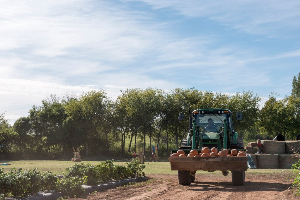 TG Farms - photo by Dennis Spielman