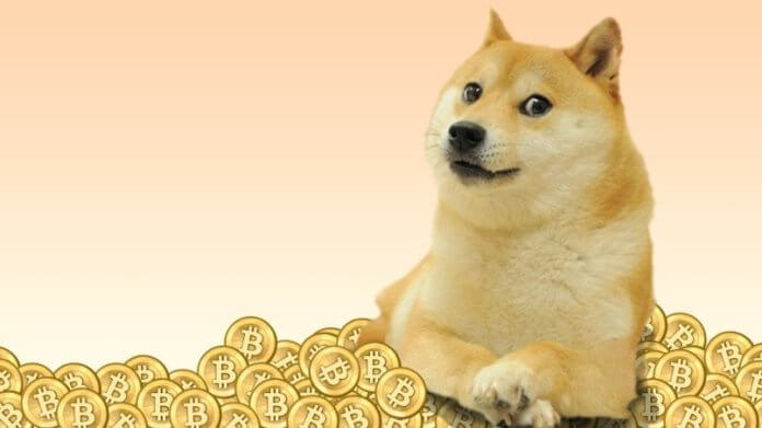 Doge Coin Makes Millionaires Over Night