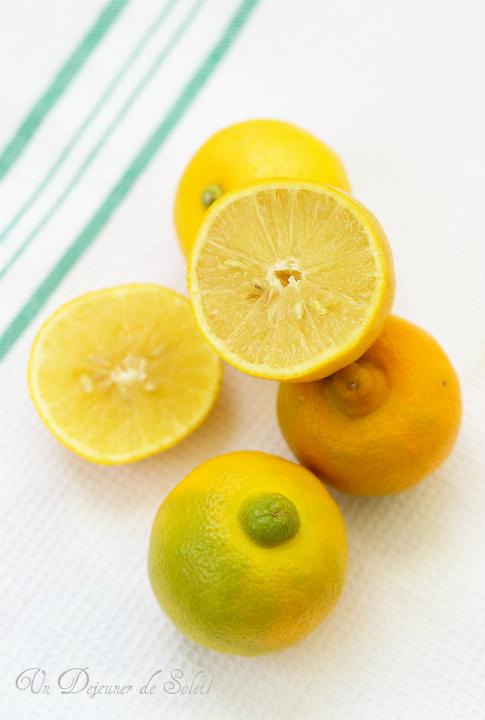 Citron bergamote : infos, comment l'utiliser, où l'acheter