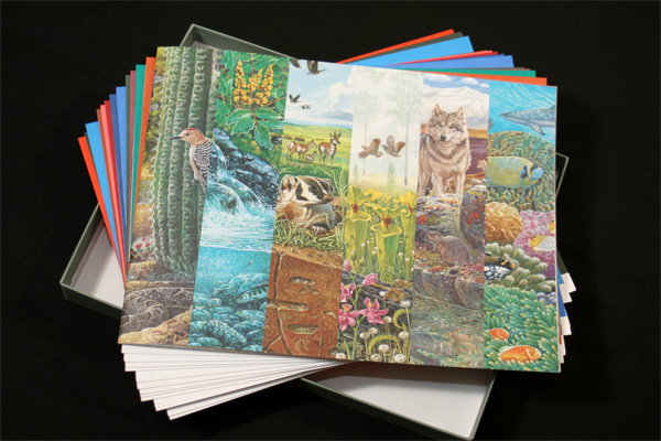 FPO Nature of America Stamp Series Limited Edition Collectors Set