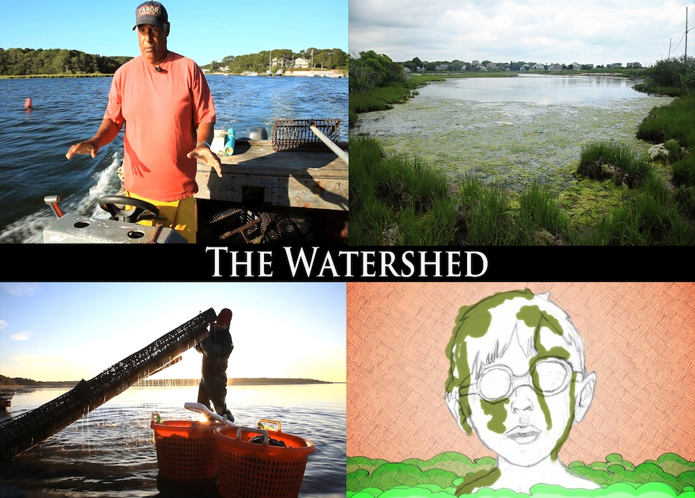 THE WATERSHED Goes to San Francisco International Ocean Film Fest
